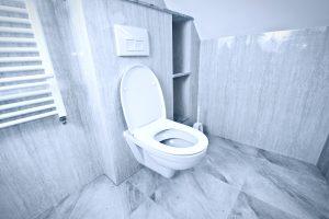 Choosing the right toilet is vital!
